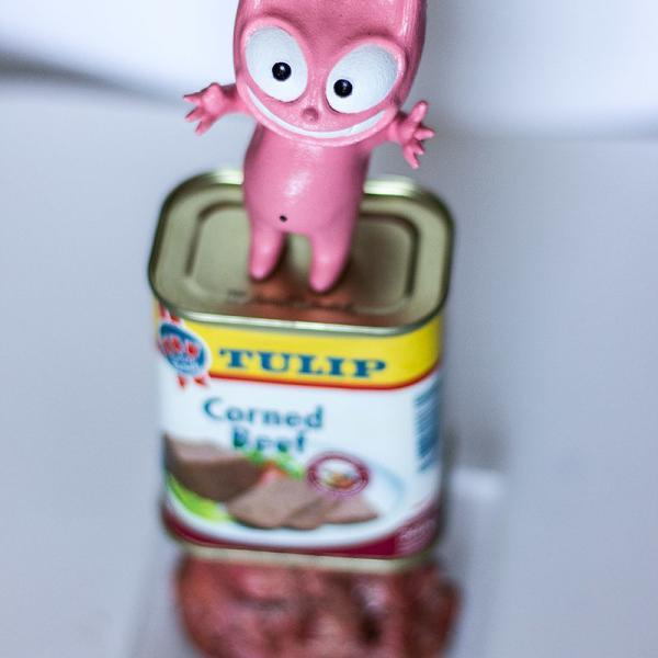 """Chat Rose Corned Beef"" de Taburchi"