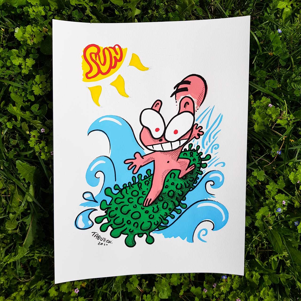 chat-surfeur
